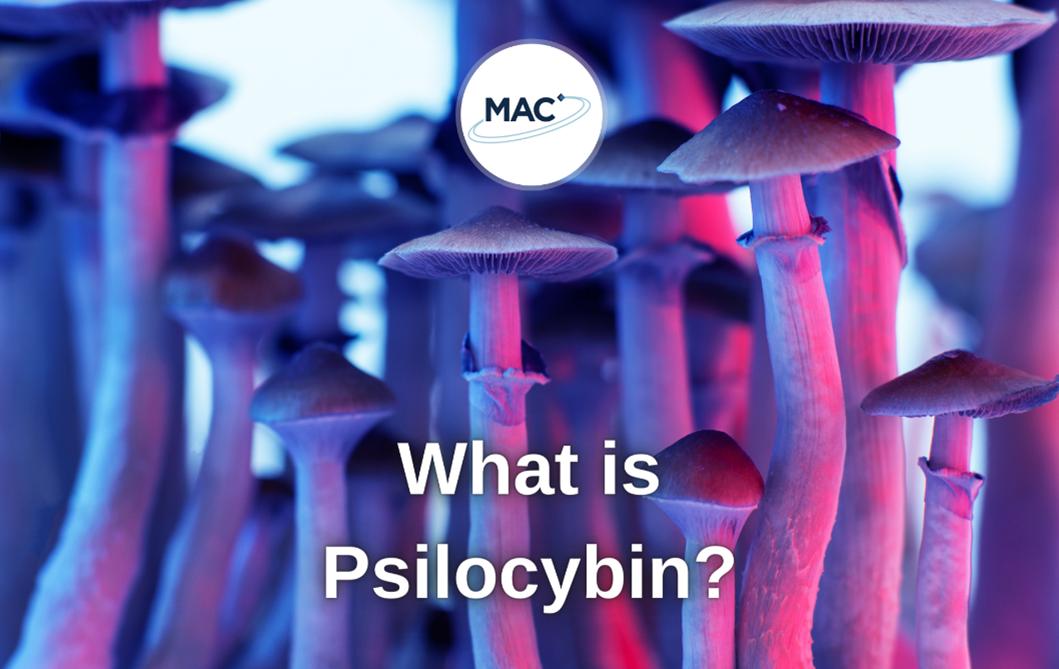 What is Psilocybin